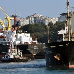 В Одеському торговельному порту виявлено зловживань на 1 мільярд гривень