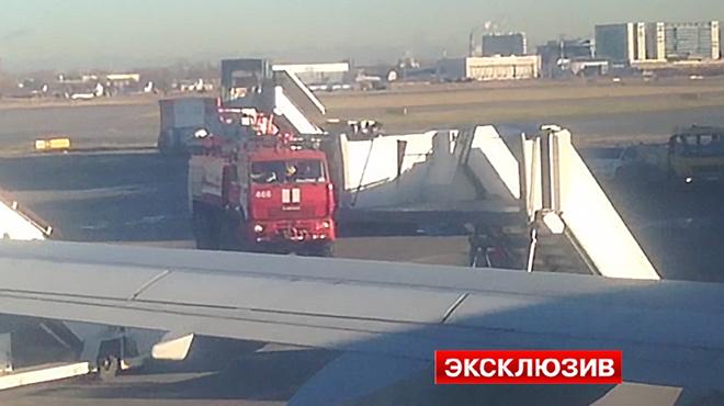 УПетербурзі евакуюють пасажирів з літака, щопрямував до Єгипту