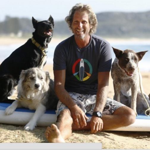 Мережу підкорили собаки, які займаються серфінгом (фото)