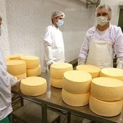 Україна потрапила до десятки найбільших експортерів сира і масла