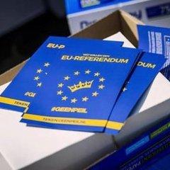 У Голландії пояснили серйозність референдуму щодо України