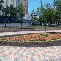 Зеленбудівці запрошують у новий сквер по проспекту Лобановського (фото)