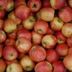 У Криму знищили тонни яблук польського походження та іспанські апельсини
