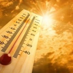 Цього тижня до України прийде 30-градусна спека