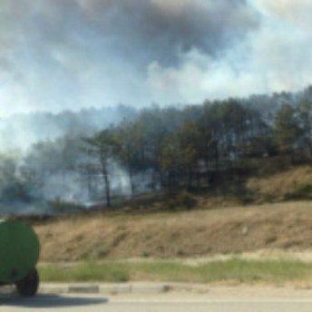 Масштабна пожежа охопила кримський ліс