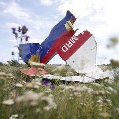 MH17 збили з території бойовиків із російського «Бука» - слідство