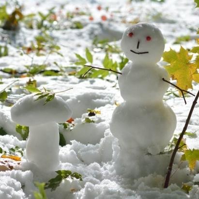 В Карпатах уже лежить перший сніг