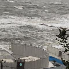 Під час шторму в Одесі потонула шхуна турецьких браконьєрів