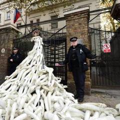 Пластиковими руками закидали посольство Росії в Лондоні (фото)