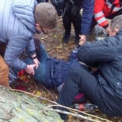 В Ужгороді на школярку впало дерево, яке обрізали комунальники