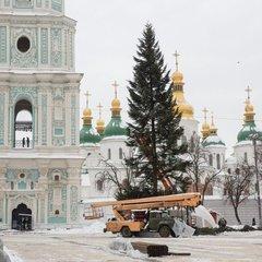 В Києві встановили головну ялинку України (фото)