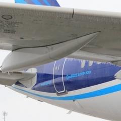 Крижаний дощ: аеропорт «Бориспіль» призупинив польоти (фото, відео)
