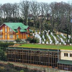 «Лежить у гамаку, грає в теніс»: як живе Янукович в Сочі