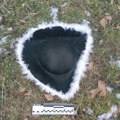 У маскарадному капелюсі із білим дощиком. У Києві нарядний злодій пограбував магазин