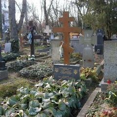Останки відомого українського письменника Олександра Олеся, примусово ексгумовані
