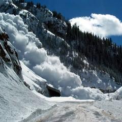 На Закарпатті снігова лавина засипала житловий будинок (Фото)