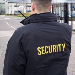 Поліція затримала особистого охоронця «мера» Слов'янська