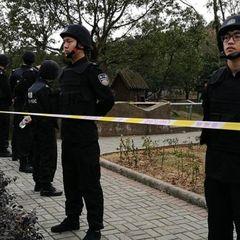 Тигр загриз відвідувача зоопарку в Китаї