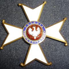Польський орден опинився серед нацистських нагород в американському серіалі