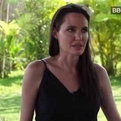 Анджеліна Джолі зі сльозами згадувала про розлучення (відео)