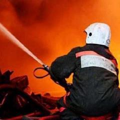 Масштабна пожежа на Житомирщині: знищено частину деревообробного комбінату