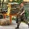 Канада пришле Україні військове обладнання