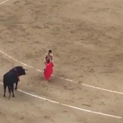 В Іспанії поранений бик підняв матадора на роги (відео)
