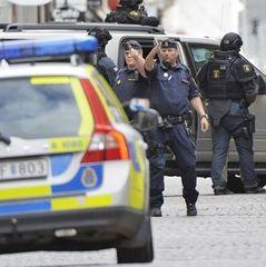 У центрі Стокгольма вантажівка в'їхала в натовп (фото, відео)