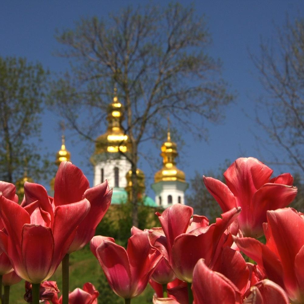 В Україні сьогодні буде тепло і без опадів (карта)