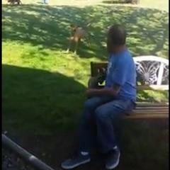 Чоловіка, який схуд на 22 кг, не впізнав власний пес (відео)