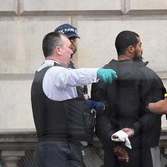 Біля резиденції Мей у Лондоні затримано чоловіка, озброєного ножами (фото)