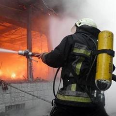 Жахлива пожежа в Запоріжжі: двоє малюків загинули, надихавшись чадного газу (відео)