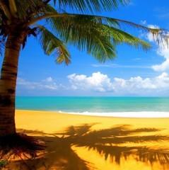 Гайда на відпочинок!: опубліковано рейтинг найчистіших пляжів світу