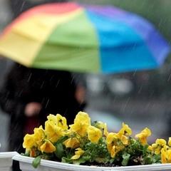 В Україні сьогодні буде тепло, на заході пройдуть дощі з грозами (карта)