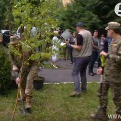 Близько 200 дерев висадили на Алеї слави біля центрального госпіталю в пам