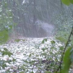 Синоптик розповіла чи може в Україну прийти такий ураган як був у Москві