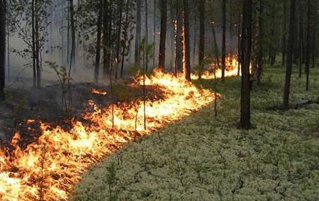 Навихідних натериторії України— висока пожежна небезпека
