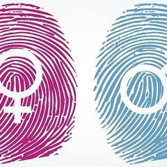 У Кабміні може з'явитися посада уповноваженого з питань гендерної політики