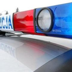 «Лапки на кермо»: у Польщі стартувала нова акція поліції