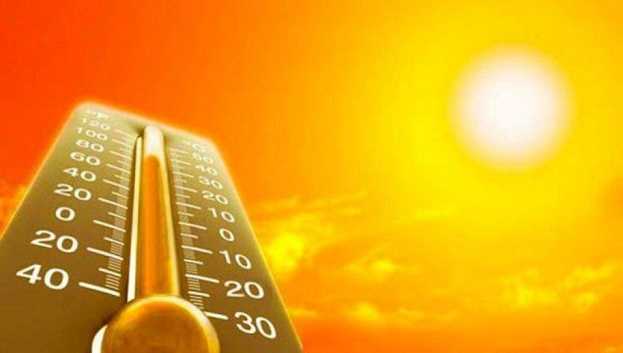 До2100 року більша частина людства може загинути від спеки,— вчені