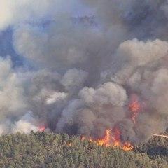 У зоні відчуження вирує пожежа - ДСНС