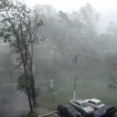 Наслідки буревію в Україні: 800 знеструмлених населених пунктів, повалені дерева, зірвані дахи