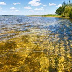 Науковці хочуть запобігти зникненню Шацьких озер