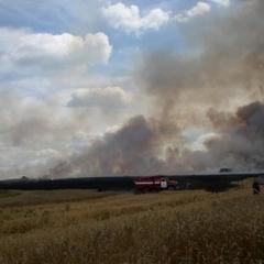 Через ворожі обстріли на Донбасі горять пшеничні поля, вогнеборці рятують урожай (фото)