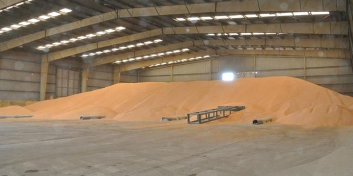 У МВС пояснили чому не перевіряли наявність у Держрезерві 150 тисяч тонн зерна