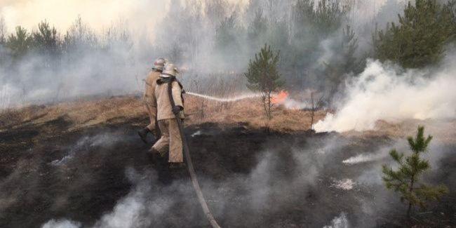 Рятувальники заявили про високу ймовірність пожеж в екосистемах України