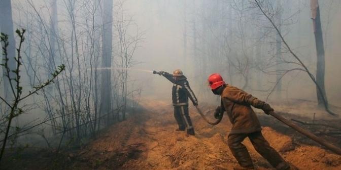 У Чорнобильській зоні виникла нова пожежа