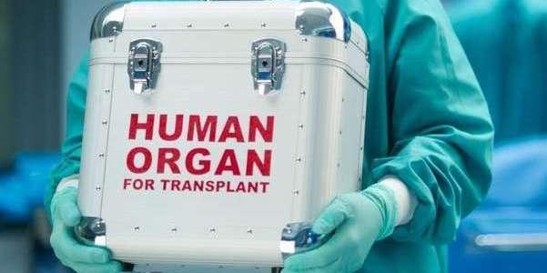 Понад 5 тисяч українців чекають на трансплантацію органів: МОЗ розширює перелік лікарень, які можуть надавати ці послуги