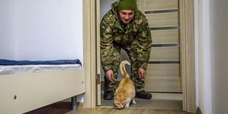Уряд виділить ще майже 250 млн грн на житло для військових — Шмигаль