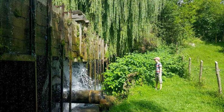 На Закарпатті понад 100 років працює єдина в Європі водяна кузня